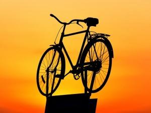 dviraciai, akcijos, bikko