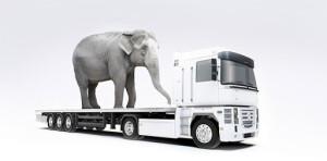 Kodėl verta investuoti į saugumą gabenant krovinius